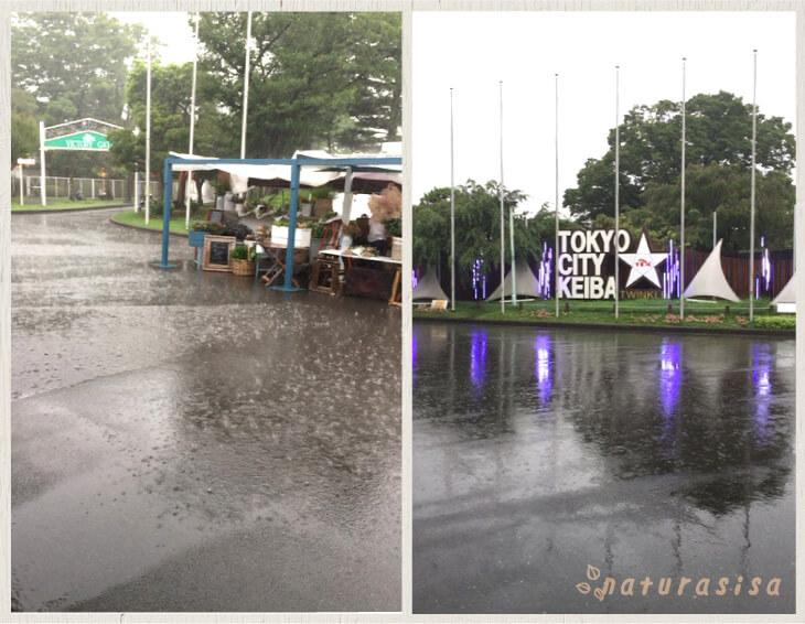 東京蚤の市雷雨