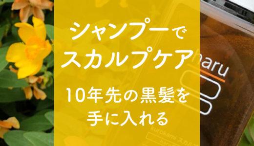 新kurokamiスカルプ【haruシャンプー】抜け毛や白髪に負けない理想の黒髪へ