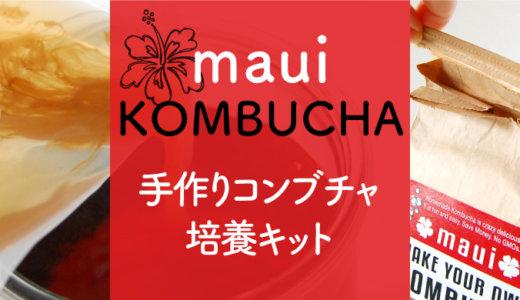 ハワイ州マウイ島発コンブチャキットの作り方でコンブチャレンジ!
