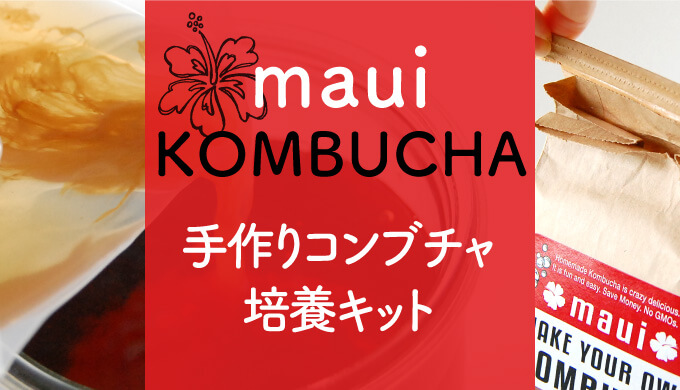 ハワイマウイコンブチャ培養キット