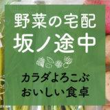 坂ノ途中 野菜宅配のお試しセット