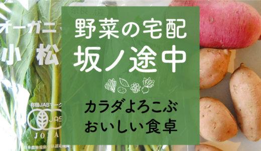 【坂ノ途中】野菜の口コミ!送料無料お試しセットのおいしいオーガニック野菜