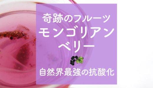 純モンゴリアンベリーの効果の秘密は美しい紫色にあり!